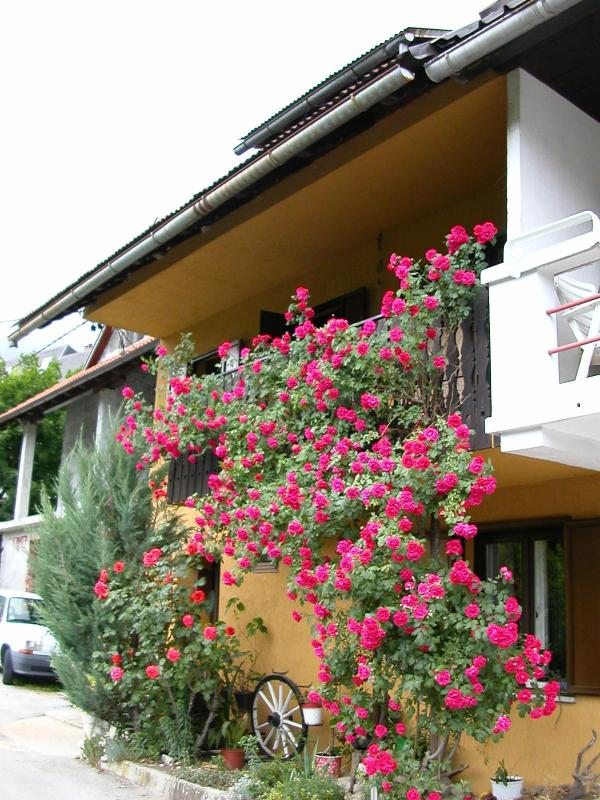 Front of house - Bovec: 4-bed house with garden and balcony views - Bovec - rentals