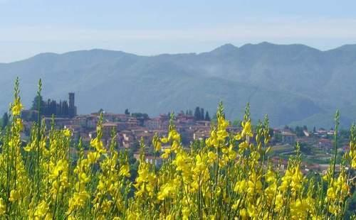 Il Trebbio colour - 3 bedrooms holiday villa in Barga (Tuscany-Lucca) - Barga - rentals