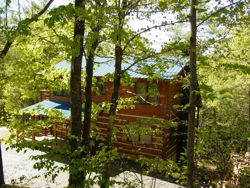 Blueberry Hideaway - Summer View - Blueberry Hideaway/Hot Tub/Sky Balcony off Master - Boone - rentals