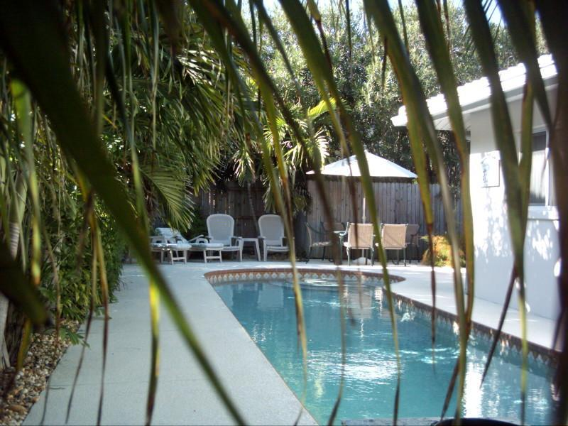 38 Ft. Heated Pool - Gulf Coast Family Vacation Home - Redington Shores - rentals