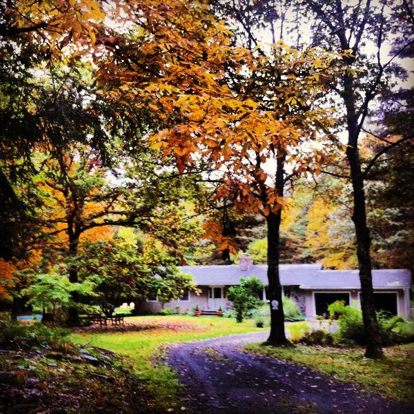 Rhinebeck Retreat - Rhinebeck Retreat - Rhinebeck - rentals