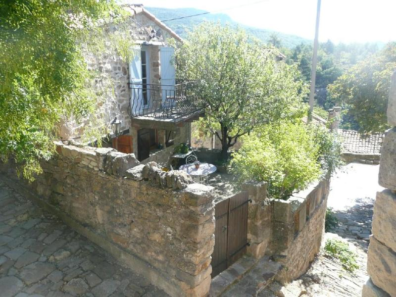 The house - Stone house with lovely courtyard. - Saint-Privat - rentals