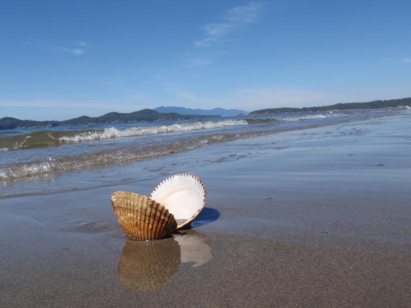 Welcome Beach at Konrad Cottages - KONRAD COTTAGES Beach Cottage -- Spring Special! - Halfmoon Bay - rentals