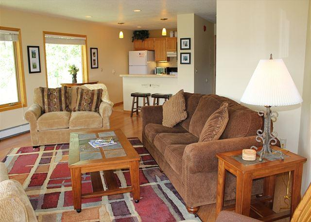 WH216 Attractive Condo w/Great Views, Wifi, Fireplace, Common Hot Tub - Image 1 - Silverthorne - rentals