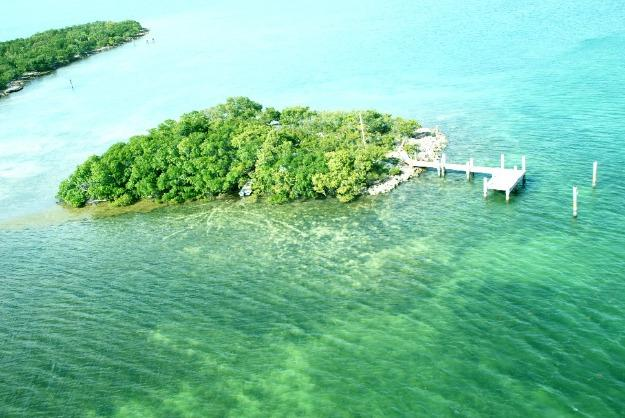 Island: View from Helicopter - Dolphin Jump Key Home w/Private Island & Motorboat - Marathon - rentals