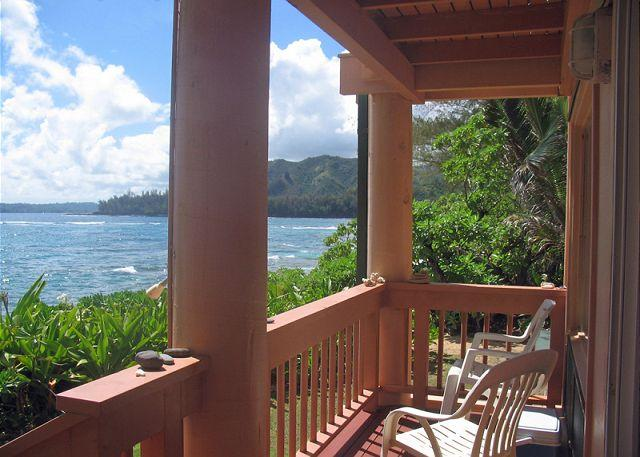 Beachfront Retreat-studio - Image 1 - Wainiha - rentals