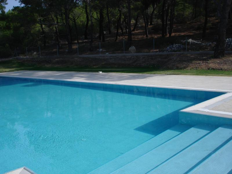 shared pool, but almost all villas have private pools so this is always only mine ! - villa in the middle of pure egean flora ,sea... - Izmir - rentals