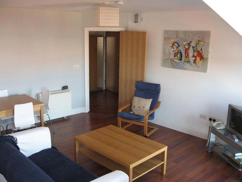 Living Room - Cork City Apartment - Cork - rentals