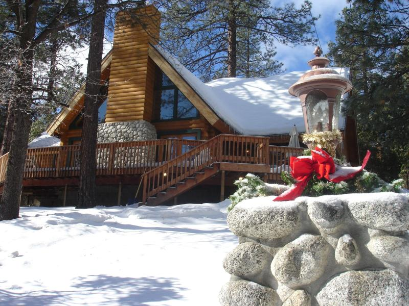 Mountain Living At It\'s Best! - Luxury Mountain Log Home - Idyllwild - rentals