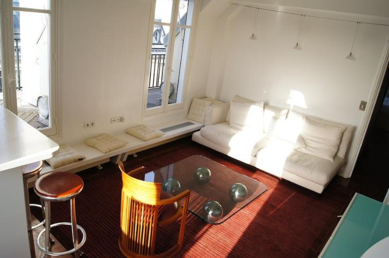 Suite Champs Elysees - The name says it all - Image 1 - Paris - rentals