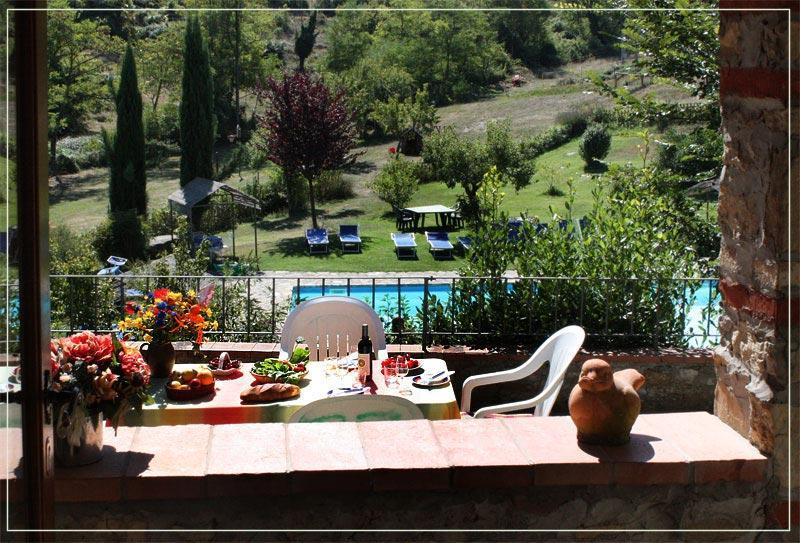 view from entrance/kitchen onto pool and terrace - 2BR /1BA apartment - Castellina In Chianti - rentals