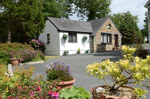 Holiday Cottage - Old Chapel Cottage, Dinas - Image 1 - Dinas Cross - rentals