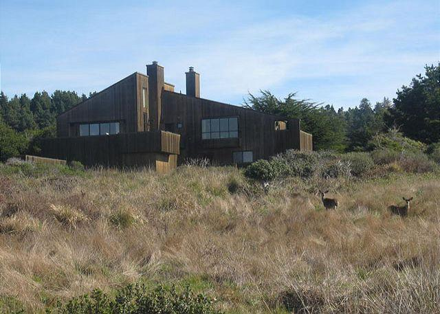 View of home - Seaside Serenity - Sea Ranch - rentals