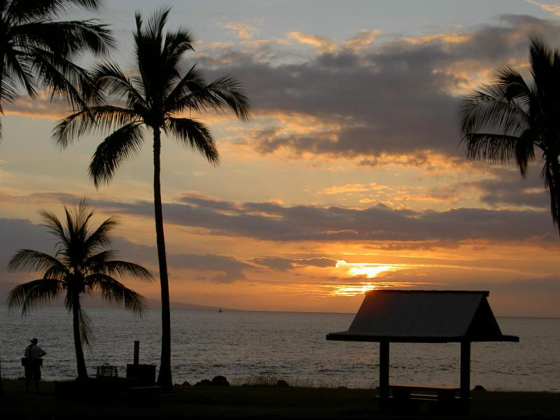 Walk to this great family beach - 4 Bedroom private Lahaina Maui home w/ocean views - Lahaina - rentals
