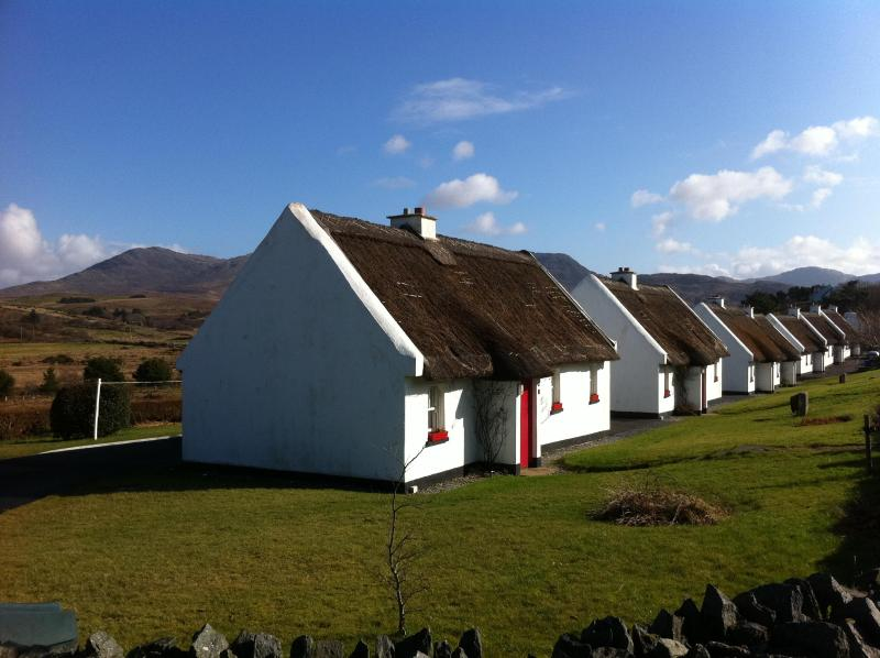 Self-catering Thatched Cottage in Connemara - Image 1 - Galway - rentals
