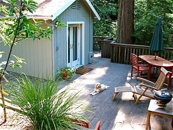 entering The House At The End Of The Road - The Cabin At The End Of The Road - Guerneville - rentals