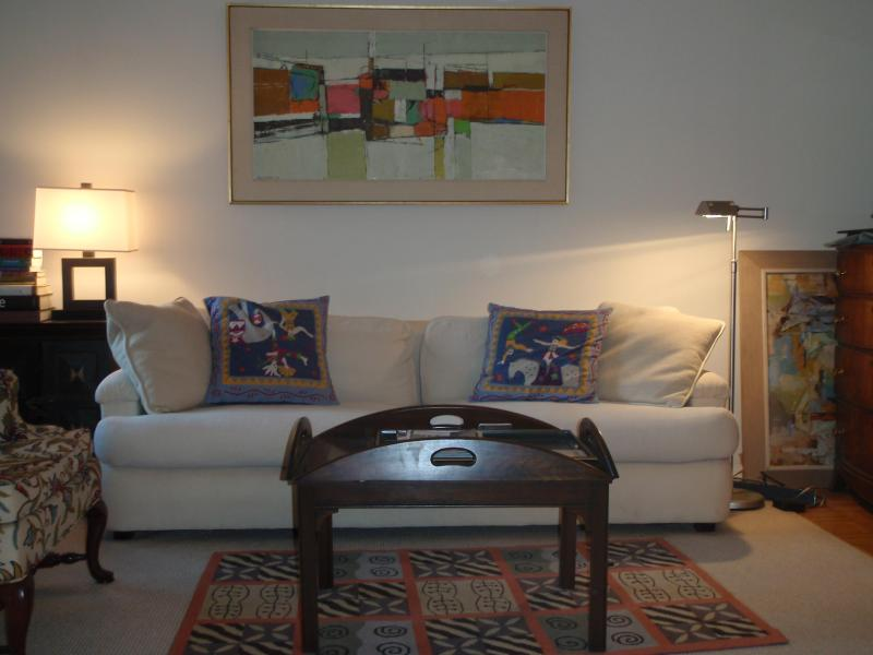 Living Room - Luxury 1 bedroom, condo, doorman building - New York City - rentals