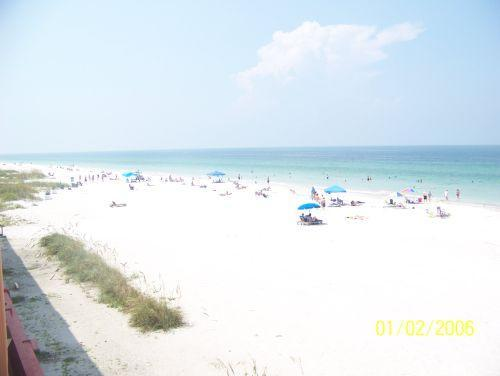 You could be here - DIRECT GULF FRONT BEACH PARADISE ! - Indian Shores - rentals