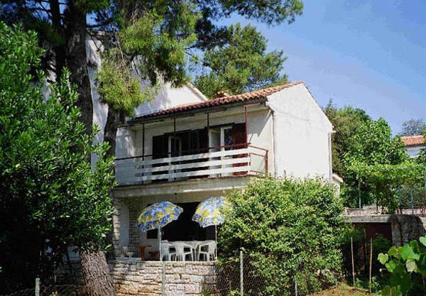 The south side of the A4+2 house with the big terrace and garden - Apartments Samsa, Rovinj, 250 m from the beach - Rovinj - rentals