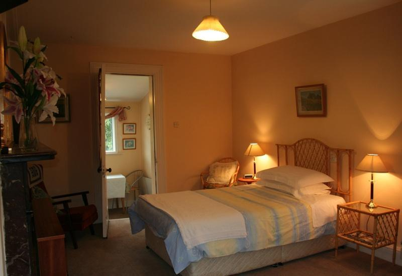 Bedroom - Ballsbridge Apartment Dublin - Dublin - rentals