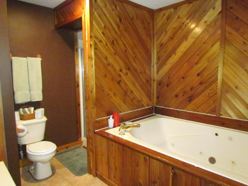 Relax your troubles away in one of our Standard Whirlpool Cabins with double sized whirlpool tub - Kishauwau Cabins near Starved Rock Utica IL Whrlpl - Utica - rentals