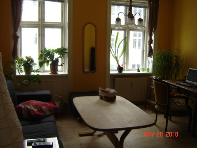 Aalborggade Apartment - Cheap Copenhagen apartment at Oesterbro - Copenhagen - rentals