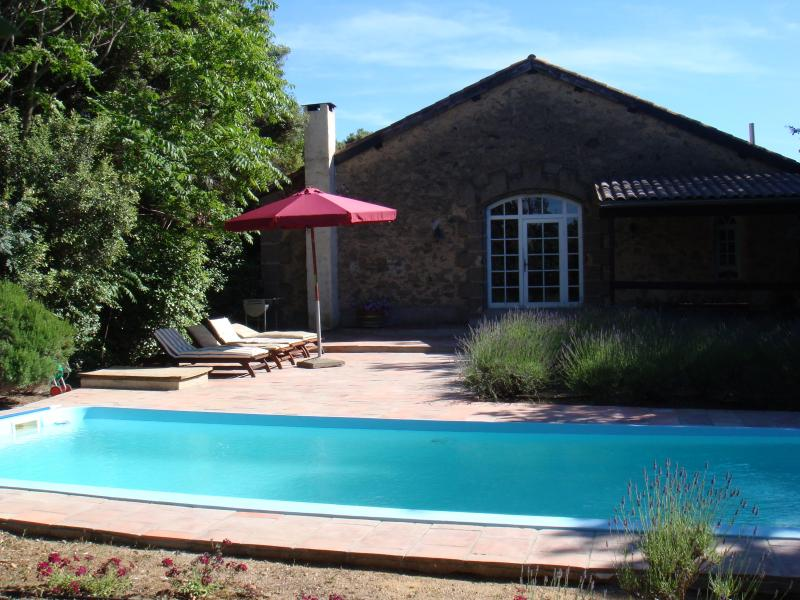 Priavte swimming pool - Detached house with private pool in Wine Castle - Servian - rentals