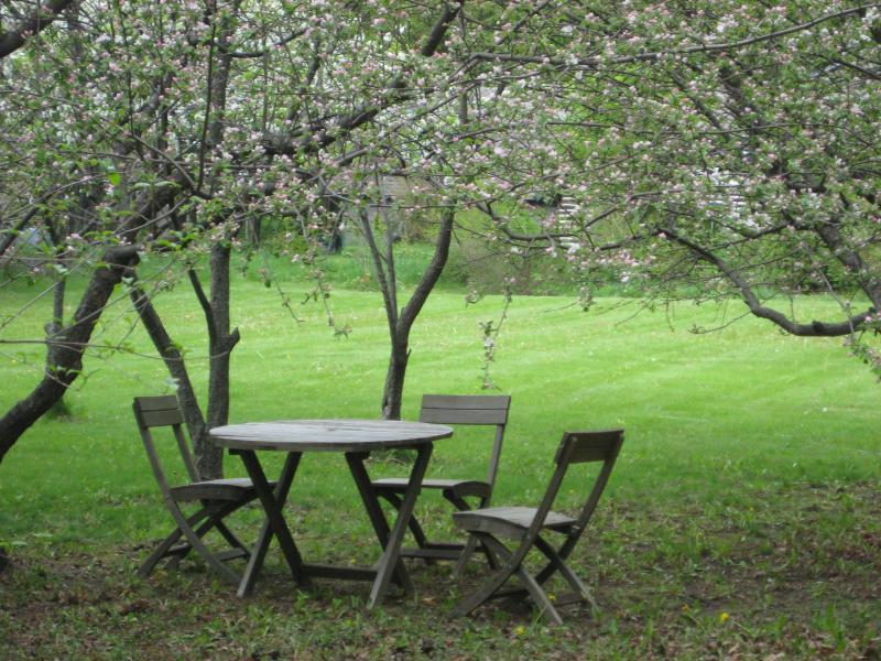 Under the Apple Trees - Villa Villekula - Sister Bay - rentals
