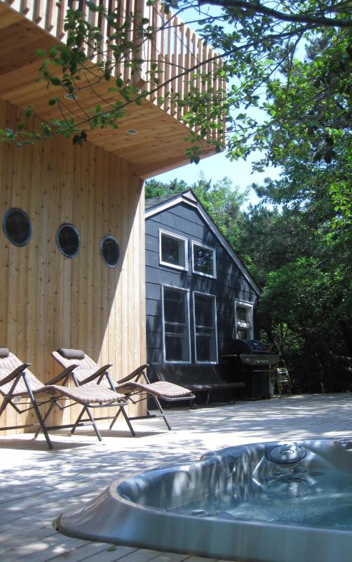 Southwest Corner View - RENOVATED HOUSE in the PINES - Fire Island Pines - rentals