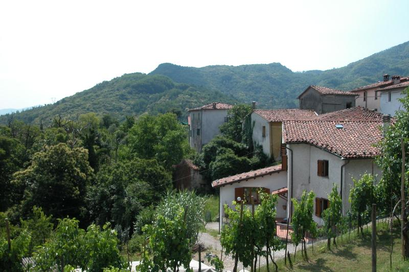 View of moutains - Cardoso Holiday House - Lucca - rentals