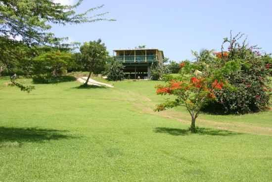 A secluded hill. - Amarilla Casita In Vieques - Vieques - rentals