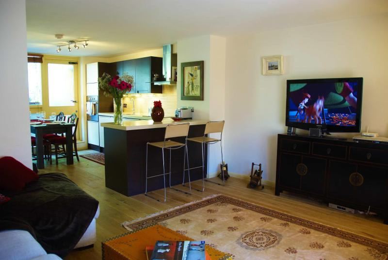 living room and kitchen - Luxury Central London Duplex Apartment - London - rentals