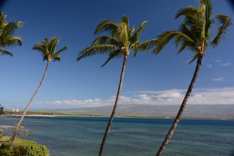 Spectacular panoramic ocean front - Stunning Oceanfront Luxory with INCREDIBLE views! - Maalaea - rentals