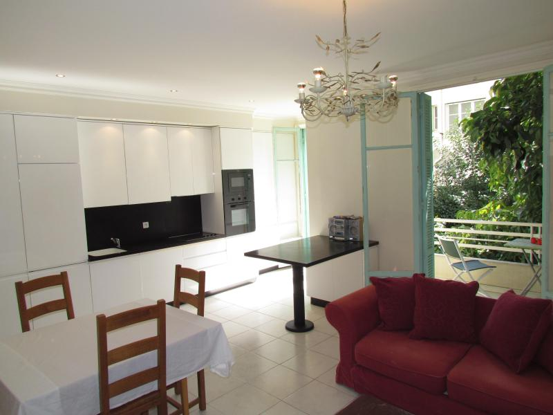 Kitchen/ Living Area - Beautifully renovated 2 bedroom apartment in Nice - Nice - rentals