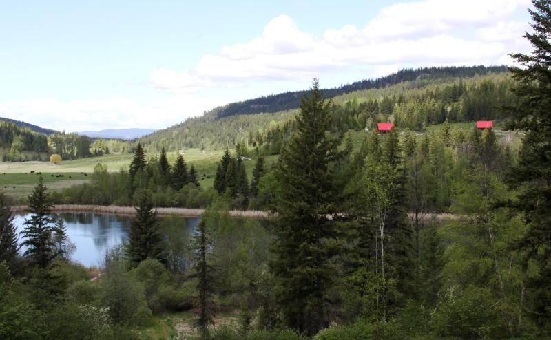 Lake and cabins - Bear Valley Highlands Wilderness retreat - Cabin 1 - Lumby - rentals