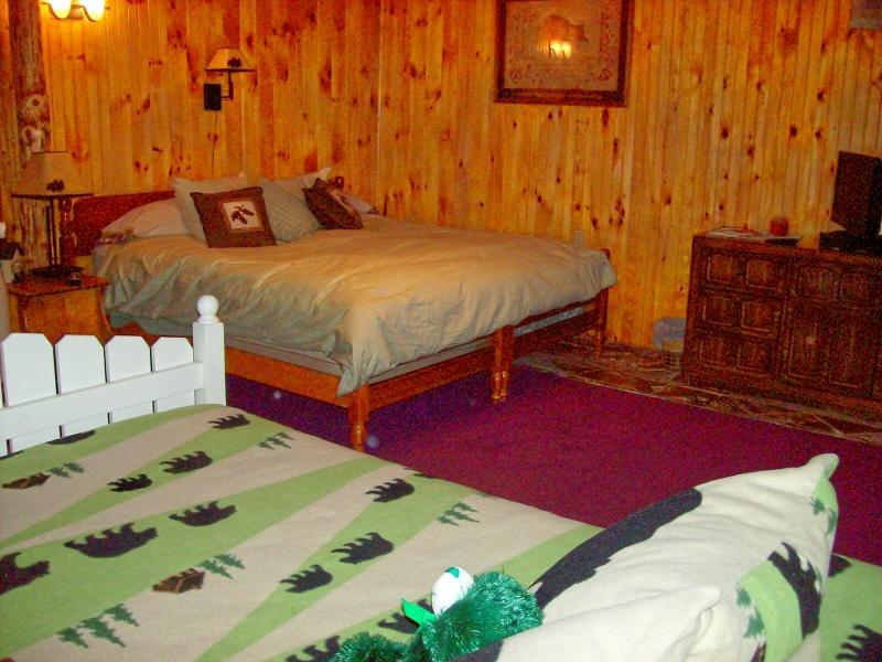 family room--sleeps 4, king bed and double bed--also room for a cot or airbed - PRIVATE, RURAL RETREAT IN THE FOOTHILLS OF THE ADIRONDACKS! - Remsen - rentals