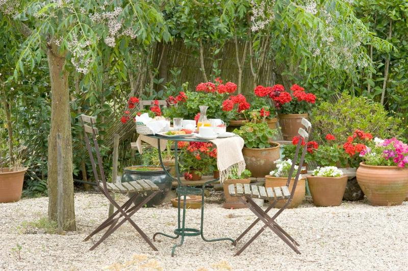 Breakfast outside - Best B&b in Southwest Alentejo with delicious food - Odemira - rentals