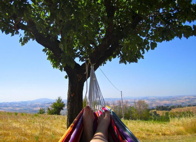 Your view from the hammock - B&B Terra Mossa, the small B&B with the great view - Ancona - rentals