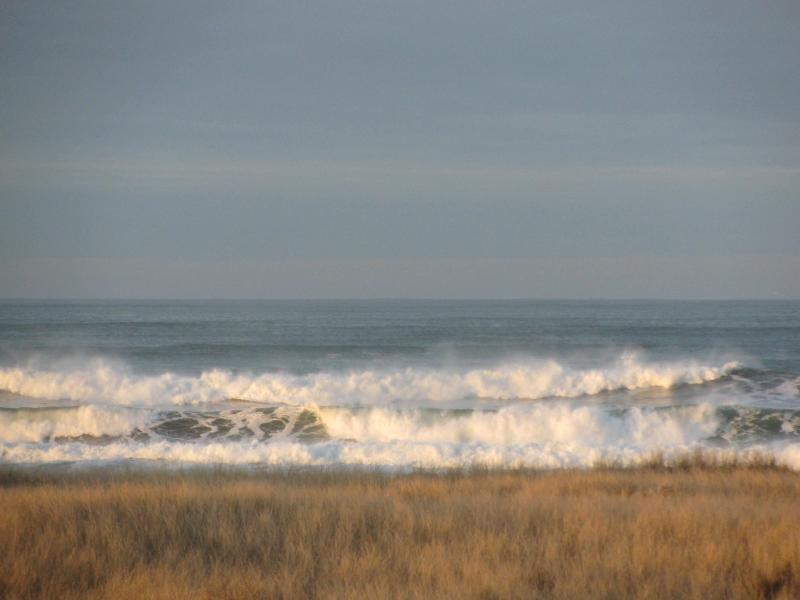 waves you see from the front room!!! - VIEW Westports SEAVIEW a  LARGE CLEAN HOUSE - Westport - rentals
