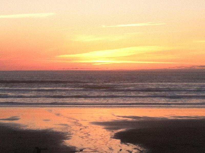 Breath taking Sunset! - The Sandcastle Where Oceanfront FUN Happens... - Manzanita - rentals