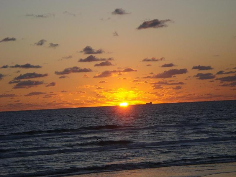 Sunrise !! - Beach front South Padre Island Condo - South Padre Island - rentals