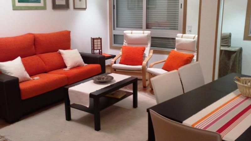 large and modern livingroom - Elegant apartment next to City of Arts and Science - Valencia - rentals
