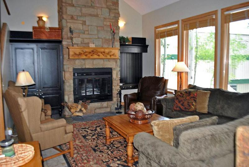 Village At Sugarplum Unit 14 - Image 1 - Snowbird - rentals
