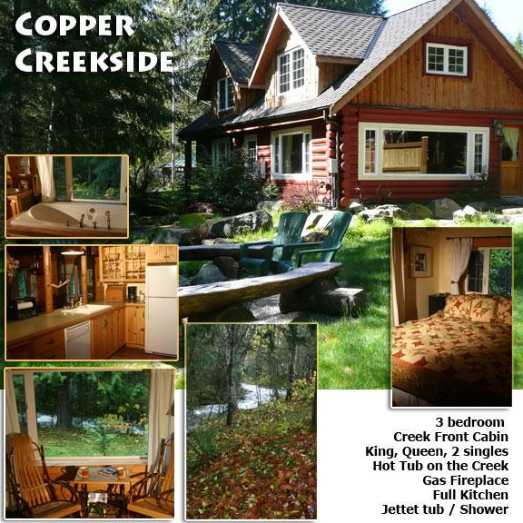 3 bedrooms  King  Queen 2 singles - Copper Creekside Cabin @ Mt. Rainier - Mount Rainier National Park - rentals