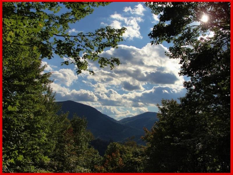 Trish's Place - Private, Quiet and a Hot tub - Image 1 - Maggie Valley - rentals