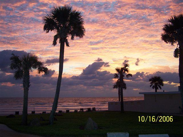 Sunrise - Spacious Condo in Oceanfront Complex near Flagler - New Smyrna Beach - rentals