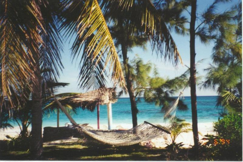 Beach view - Bahamas Beach Home Rental - Cat Island - rentals