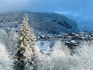 Window View - Chalet Leslie - Apartment 2 - Morzine - rentals