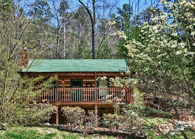 Wonderfully Romantic and Cozy Cabin Convenient to Pigeon Forge! - Image 1 - Sevierville - rentals