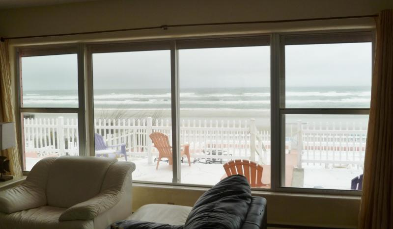 View of Beach from Living Room - Beach House Directly on the Beach - New Smyrna Beach - rentals